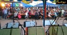 Sommerfest Mv Germania Somborn (4)